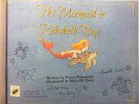Embellished Copies of Mermaid Book