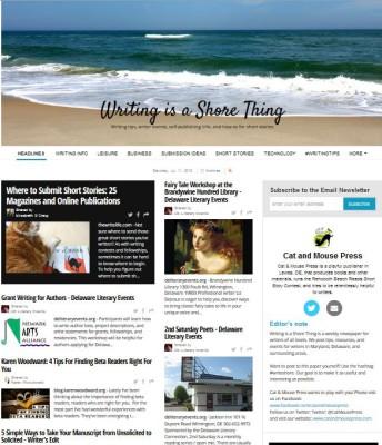Newsletter for writers